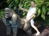 gorilla_humping